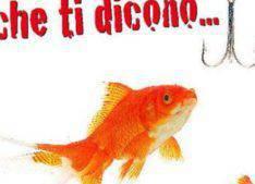 pesce-d-aprile-giordano-sindaco-vallecrosia-99207.660x368